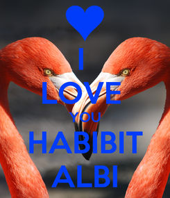 Poster: I  LOVE  YOU HABIBIT ALBI