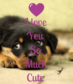 Poster: I love  You  So Much Cute
