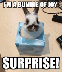 Poster: I'M A BUNDLE OF JOY  SURPRISE!