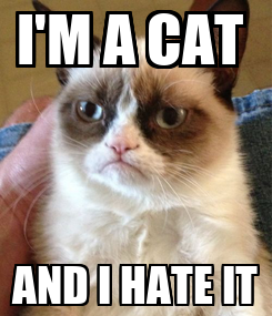 Poster: I'M A CAT  AND I HATE IT