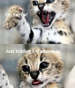 Poster:  I'm fierce!      Just kidding I'm adorable.