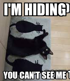 Poster: I'M HIDING YOU CAN'T SEE ME