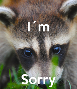 Poster: I´m    Sorry
