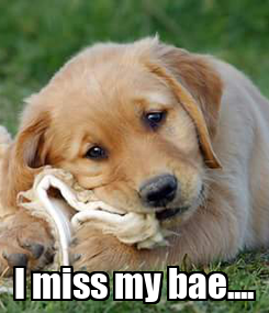 Poster:  I miss my bae....
