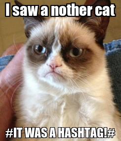 Poster: I saw a nother cat #IT WAS A HASHTAG!#
