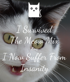Poster: I Survived The Meow Mix Loop I Now Suffer From Insanity