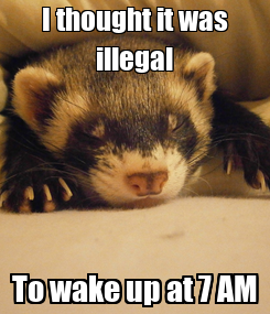 Poster: I thought it was illegal To wake up at 7 AM