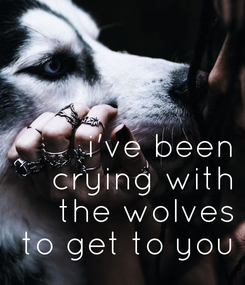 Poster:    i've been  crying with  the wolves  to get to you