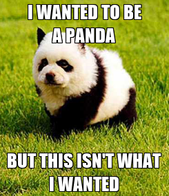 Poster: I WANTED TO BE A PANDA BUT THIS ISN'T WHAT I WANTED