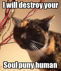Poster: I will destroy your Soul puny human
