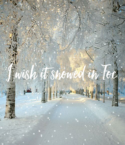 Poster: I wish it snowed in Toc