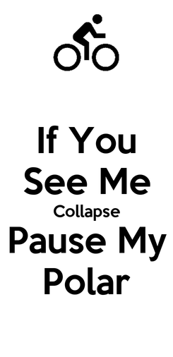 Poster: If You See Me Collapse Pause My Polar