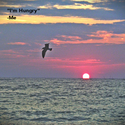 """Poster: """"I'm Hungry"""" -Me"""