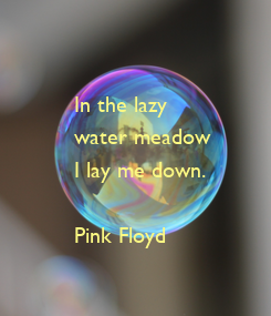Poster: In the lazy 