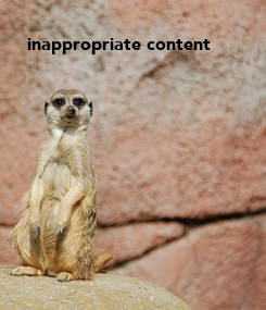 Poster: inappropriate content
