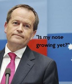 """Poster: """"Is my nose  growing yet?"""""""