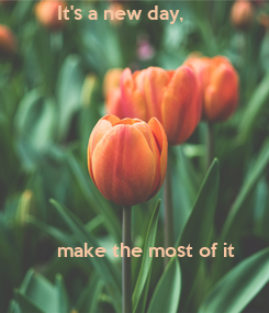 Poster: It's a new day,        make the most of it