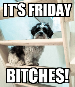 Poster: IT'S FRIDAY BITCHES!