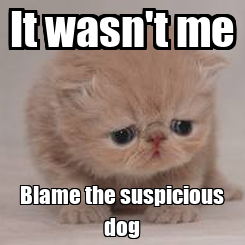 Poster: It wasn't me Blame the suspicious dog