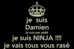 Poster: je  suis Damien je suis pas pédé je suis NINJA !!!! je vais tous vous rasé