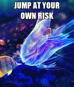 Poster: JUMP AT YOUR OWN RISK