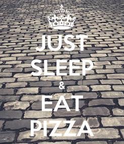 Poster: JUST SLEEP & EAT PIZZA
