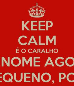 Poster: KEEP CALM É O CARALHO MEU NOME AGORA É ZÉ PEQUENO, PORRA!