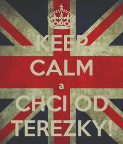Poster: KEEP CALM a CHCI OD TEREZKY!