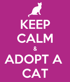 Poster: KEEP CALM & ADOPT A  CAT