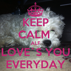Poster: KEEP CALM  ALF LOVE`S YOU EVERYDAY