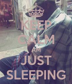 Poster: KEEP CALM AM JUST SLEEPING