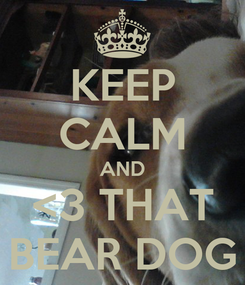 Poster: KEEP CALM AND <3 THAT BEAR DOG