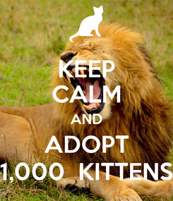 Poster: KEEP CALM AND ADOPT 1,000  KITTENS