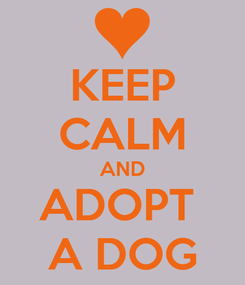 Poster: KEEP CALM AND ADOPT  A DOG