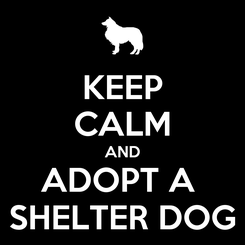 Poster: KEEP CALM AND ADOPT A  SHELTER DOG