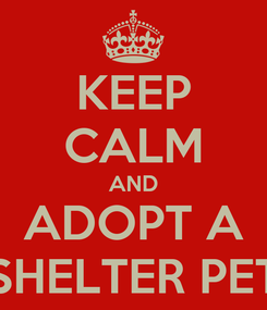 Poster: KEEP CALM AND ADOPT A SHELTER PET