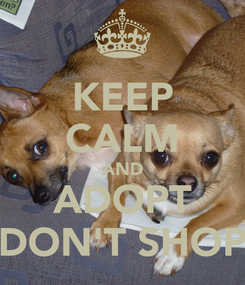 Poster: KEEP CALM AND ADOPT DON'T SHOP