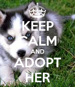 Poster: KEEP CALM AND ADOPT HER