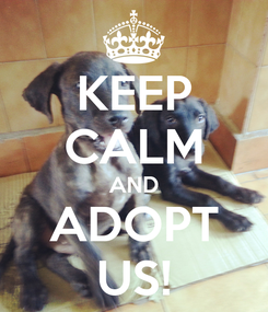 Poster: KEEP CALM AND ADOPT US!