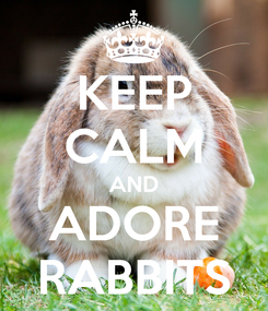Poster: KEEP CALM AND ADORE RABBITS