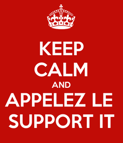 Poster: KEEP CALM AND APPELEZ LE  SUPPORT IT