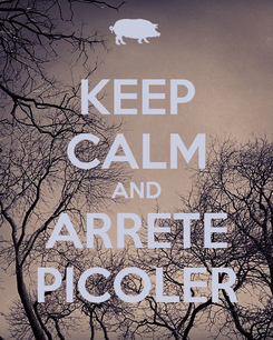 Poster: KEEP CALM AND ARRETE PICOLER