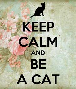 Poster: KEEP CALM AND BE A CAT