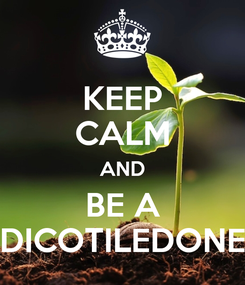 Poster: KEEP CALM AND BE A DICOTILEDONE