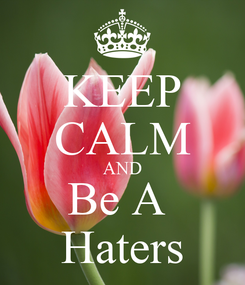 Poster: KEEP CALM AND Be A  Haters