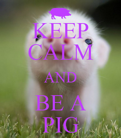 Poster: KEEP CALM AND BE A PIG