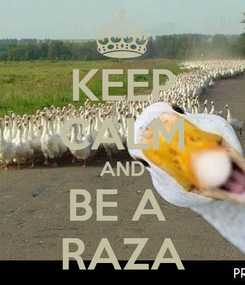 Poster: KEEP CALM AND BE A  RAZA