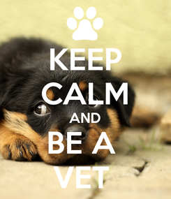 Poster: KEEP CALM AND BE A  VET