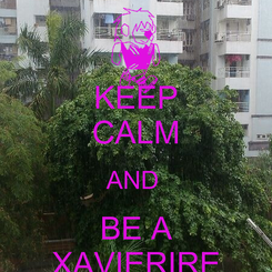 Poster: KEEP CALM AND  BE A XAVIERIRE