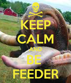 Poster: KEEP CALM AND BE  FEEDER